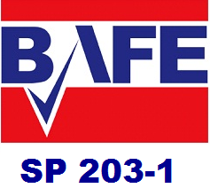 BAFE LOGO WITH 203-1 for CSS
